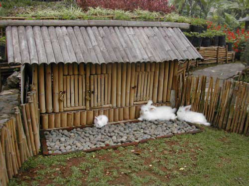 construir jaula para conejos