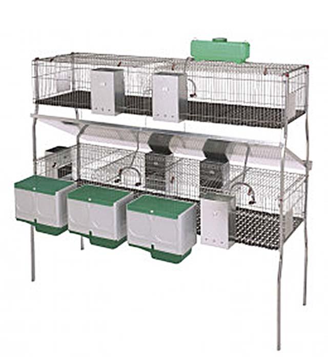 jaula para conejos de cria